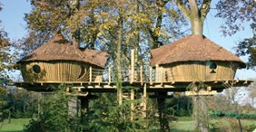 The family will love a tree houses from Key Camp