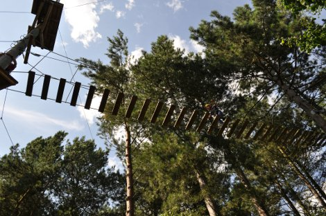 Try some Aerial Adventure at Center Parcs Elveden Forest