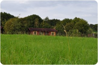Spindlewood Lodges in Wells, Somerset - a quiet set of lodges in rural Somerset