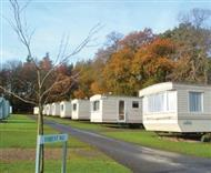 Forest Glade Holiday Park in Devon