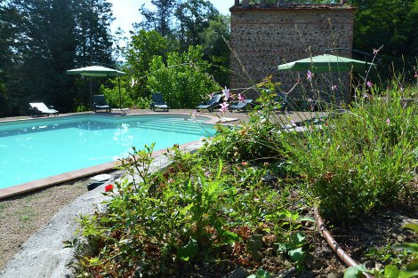 Relax in the swimming pool at Gingillo in Bucine